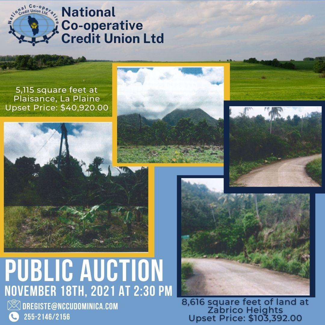 nov_18_auction_-_correct.jpg
