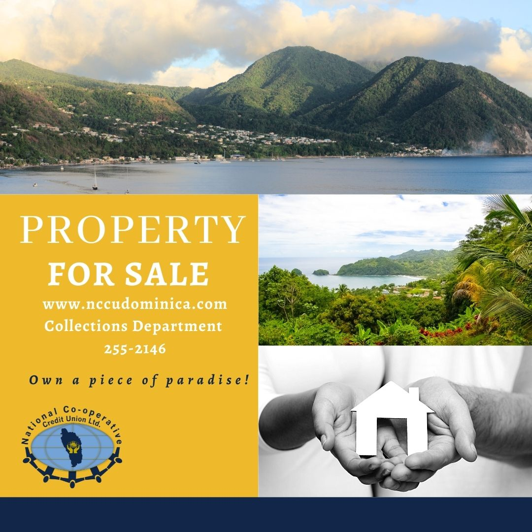 property_for_sale.jpg
